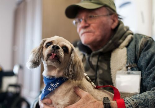 A dying patient's wish: to see his dogs Gizmo and Rascal