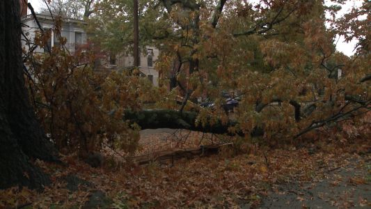 LG&E expects all power to be restored by Saturday evening after ice storm