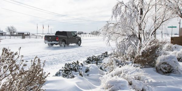 Five of Texas's ERCOT board members resign after massive power grid outage during winter storm