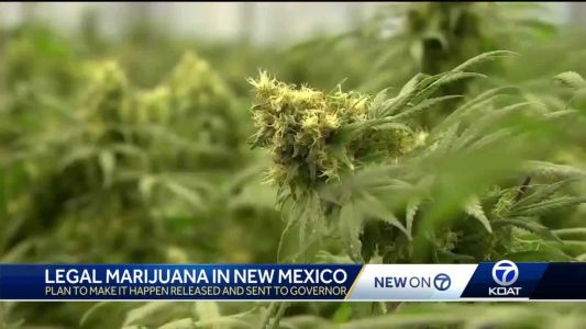 Legal cannabis in New Mexico closer to reality