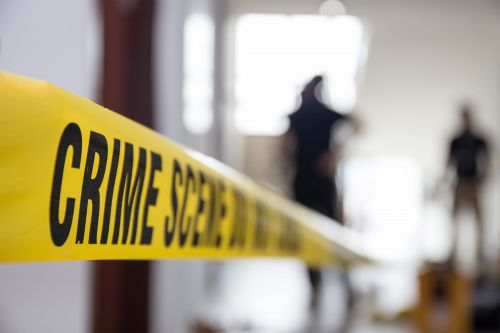 Son fatally shot trying to prevent his father's suicide