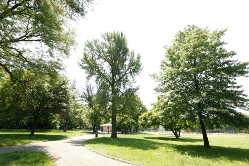 Body of baby discovered in grass outside Queens park