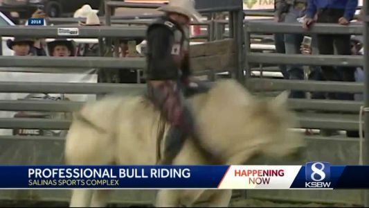 Salinas' 19th Professional Bull Riding event kicks brings 40 of the best