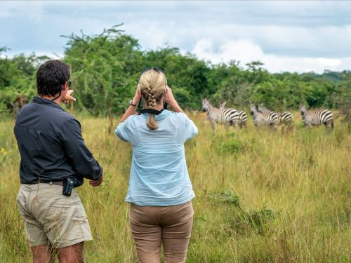 There's a new type of traveler dishing out thousands of dollars for high-end safaris. The business director of a Botswana-based company says it's all because of the millennial tech boom