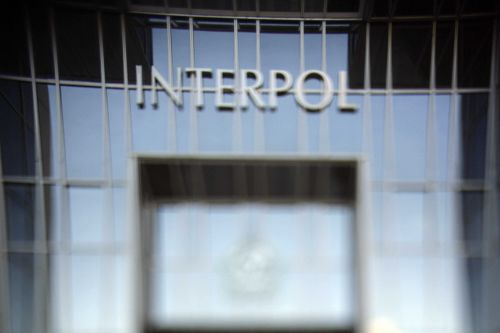 50 children saved as Interpol exposes pedophile ring sharing child abuse images