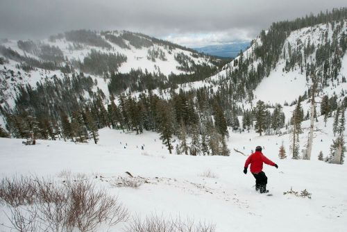Avalanche wipes out resort near Lake Tahoe, at least 1 skier dead