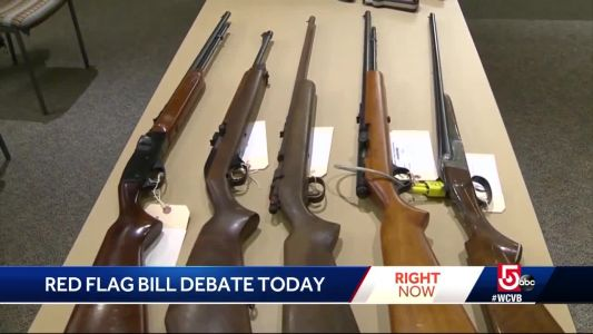 'Extreme risk' gun bill to be debated