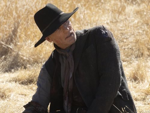 'Westworld' star reveals what the post-credits scene could mean for the future of their character