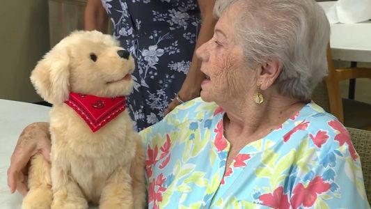 'He don't talk back to me!' Seniors receive robot pets to help with quarantine loneliness