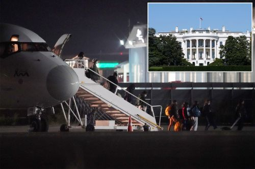 Why does White House stay silent on migrant flights?: Devine