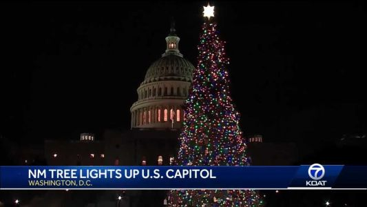 One of New Mexico's finest trees lighting up the U.S. capitol