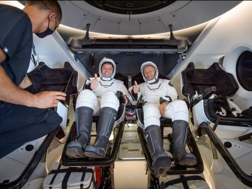 NASA astronaut Bob Behnken said the fiery plunge on SpaceX's Crew Dragon 'felt like we were inside of an animal'