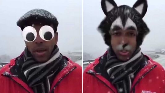 Journalist takes viral moment in stride after accidentally turning on face filters during report