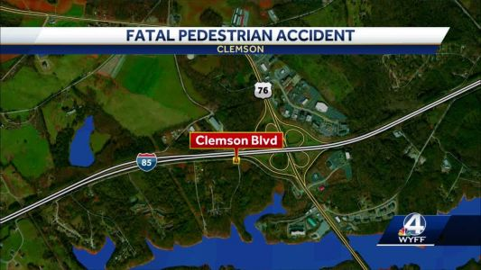 Pedestrian struck by vehicle, coroner says