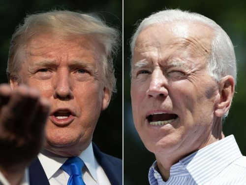 RBC shares 7 healthcare stocks to buy now to prepare for a Biden victory - and 3 that could surge even if Trump triumphs