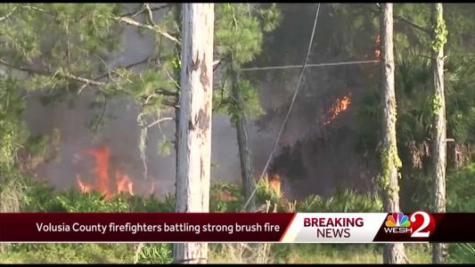 Volusia County firefighters battle strong brush fire