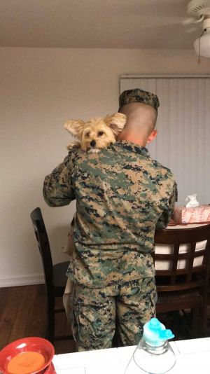 This Marine got a very furry welcome home