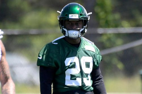 It would be a mistake to dismiss Bilal Powell in crowded Jets backfield