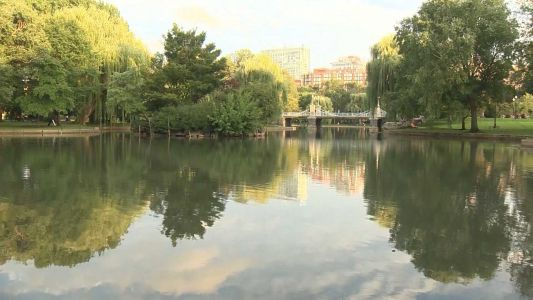 Man arrested, accused of attempting to rape woman at Boston Public Garden