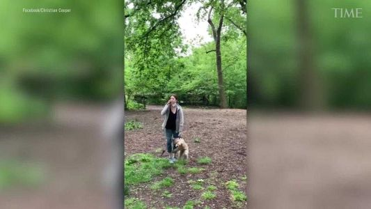 Woman charged with filing false report weeks after racist Central Park confrontation