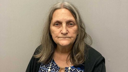 Woman accused of striking man with vehicle in Rochester, fleeing scene