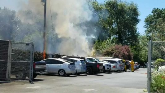 Vegetation fire damages parked cars in Freedom