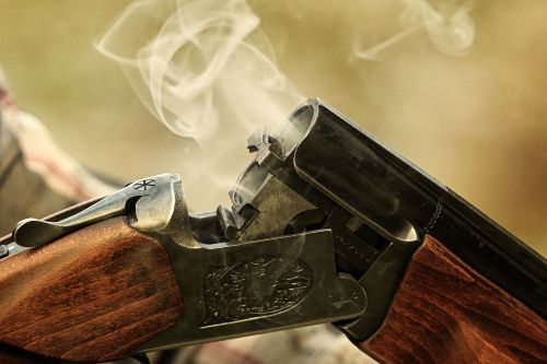 Man loses gun license after being shot by own dog