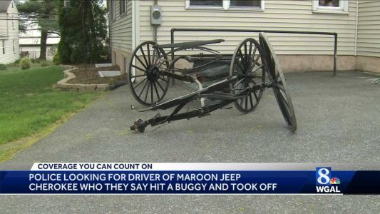 Police: Hit-and-run driver in buggy crash now in custody