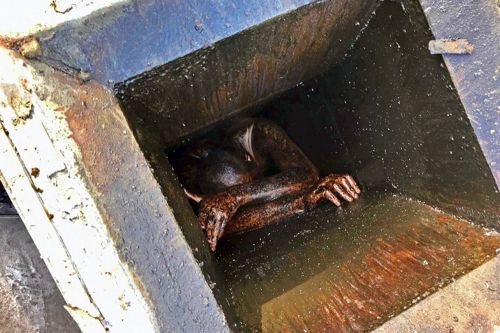 Man gets stuck for days in empty restaurant's grease vent