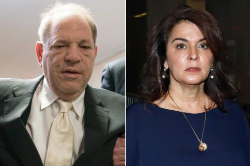 Harvey Weinstein allegedly sent chocolate penises to rape accuser Annabella Sciorra