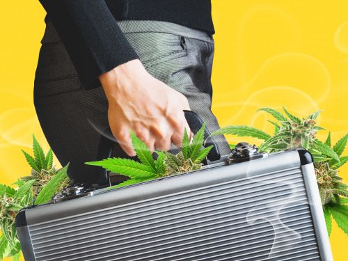 Insider Cannabis: VCs piling into cannabis tech - MORE Act delayed - New Jersey domino effect