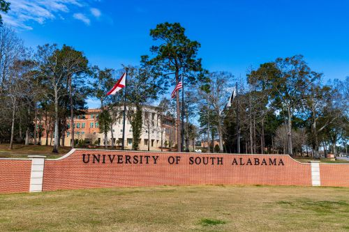 Three Alabama professors put on leave over photos of them with 'racist symbols'