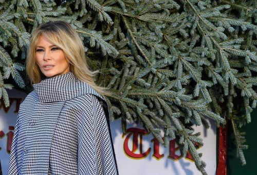 White House Christmas tree arrives, continuing tradition amid pandemic