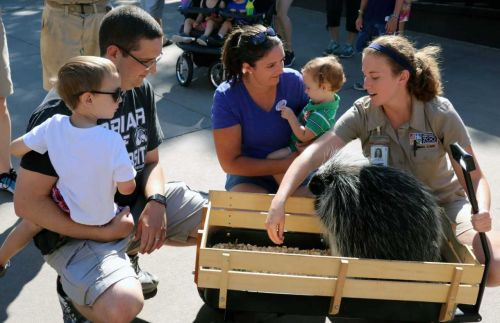 Papillion family millionth zoo visitor Saturday