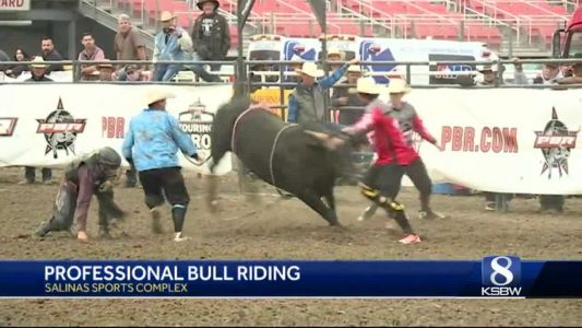 Professional Bull Riding sells out for fifth straight year at Salinas Sports Complex
