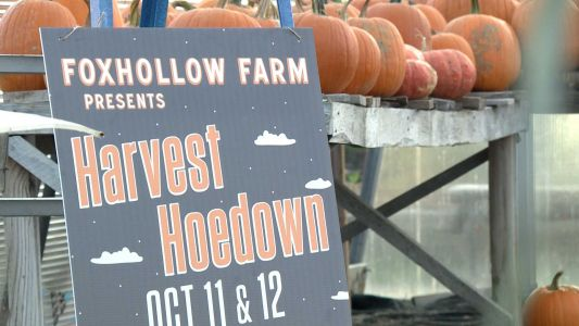 Signs of fall showing up at Foxhollow Farm