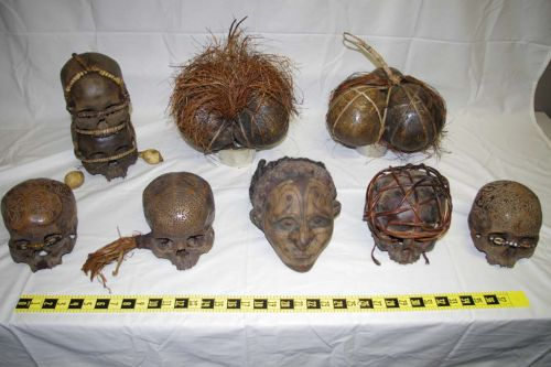 Feds want to seize 12 human skulls of members of Indonesian tribe