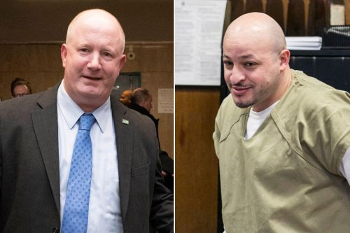 Man who attacked cop with a meat cleaver sentenced to 20 years
