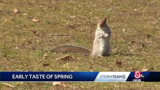 Bostonians enjoying early signs of Spring