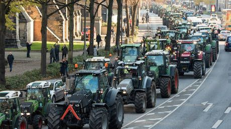 'No farm, no food, no future!': Farmers clog traffic in Hamburg with 4,000 tractors, reject 'scapegoating' by govt