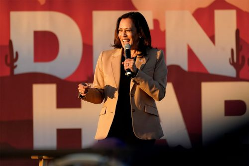 Kamala Harris target of more misinformation than Mike Pence, data shows