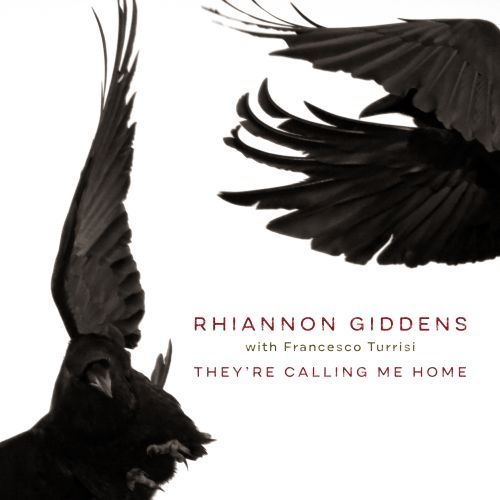 Songs of light & darkness call Rhiannon Giddens 'Home'