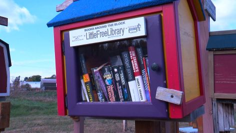 'He Was Truly A Lot Of Fun': Brother Remembers Little Free Library Founder