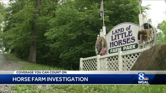WGAL News 8 investigates claims of starvation and neglect of horses at farm