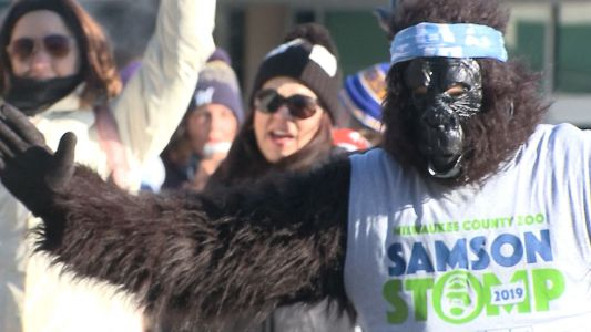 Bitter cold keeps hundreds out of 39th annual Samson Stomp & Romp