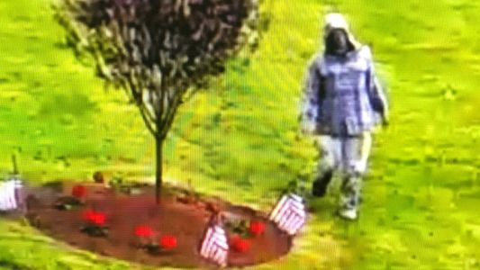 Suspect who vandalized Vietnam memorial identified, taken into custody
