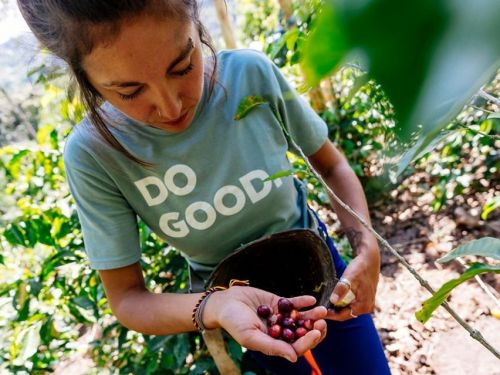 B Corps are businesses committed to using their profit for good - these 14 are making some truly great products