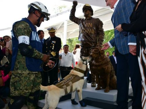 A heroic dog who saved 12 people after an earthquake met her own statue - and the photos are adorable
