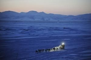Iditarod preps for any scenario as 2021 race plans proceed
