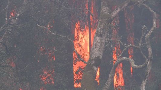 Cal Fire investigating cause of several fires that caused evacuations